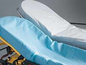Graham Medical 65247 Snug Fit Spun Bond Sheet, Light, 30'' Width, 84'' Length, Blue (Pack of 50)
