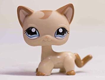 Lapps Pet Brown Short Hair Cat Kitty Blue Eyes Toy #1024