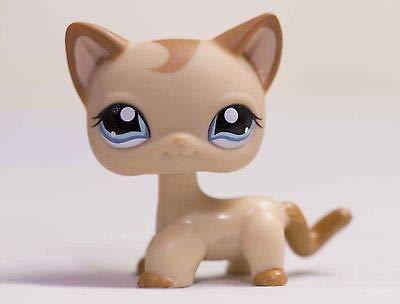 Lapps Pet Brown Short Hair Cat Kitty Blue Eyes Toy #1024