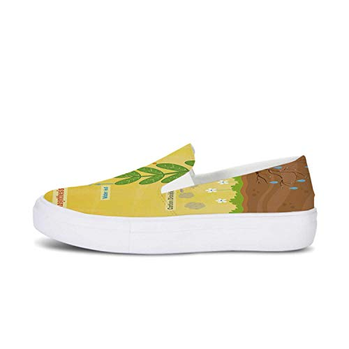 (Educational Canvas Slip On Shoes,Cartoon Photosynthesis Oxygen Carbon Dioxide Sunlight and Water Decorative for Women,US 8)