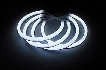 amathings LED Visio Mega Set Edition 2017 Collier en diff/érentes Couleurs et Clip LED Deluxe pour Chien et Chat Taille Universelle Longueur de Cou jusqu/à 55 cm