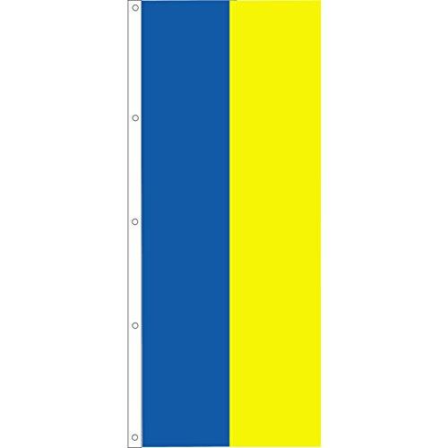 Vertical Panel Flag, Royal Blue/Yellow, 3' x 8'