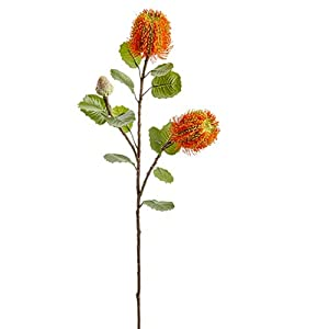"28"" Banksia Protea Silk Flower Stem -Orange (Pack of 12) 76"