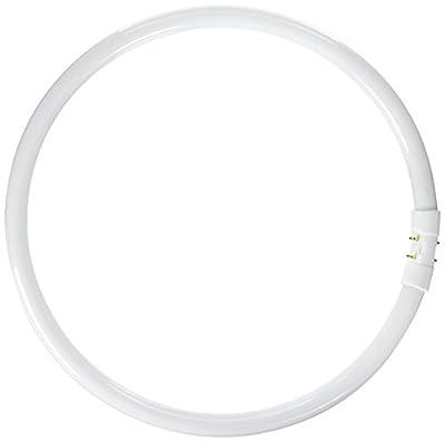 ProLume BC9276 109084 - FC40T5/835 Circular T5 Fluorescent Tube Light Bulb
