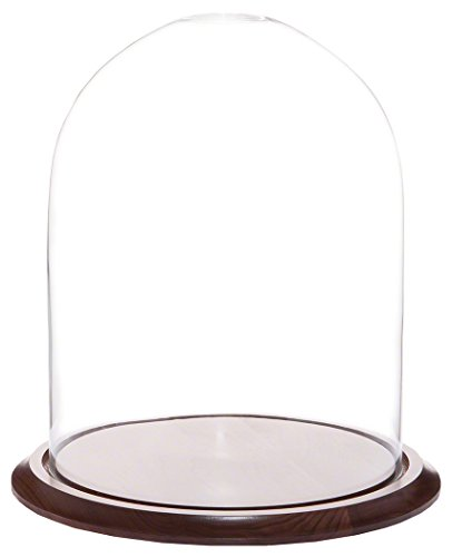 "Plymor Brand 11.75"" x 15"" Glass Display Dome Cloche (Waln..."