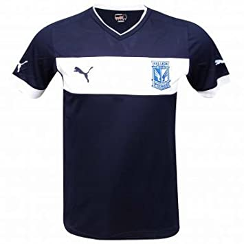 4d3ee389a5f Lech Poznan Training Shirt by Puma: Amazon.co.uk: Sports & Outdoors