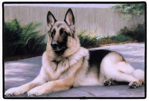 Animal World - German Shepherd on the Porch Doormat