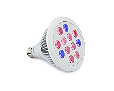 LED Grow Light Bulb - Perfect Grow Lights for Indoor & Outdoor Plants - Suitable for Hydroponic Garden Greenhouses - LED Growing Light - 12W E27 - 12 LEDS (3 Blue & 9 Red) - Divine LEDs