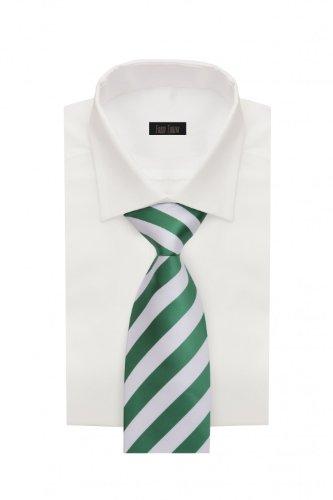 Cravate de Fabio Farini en vert blanche