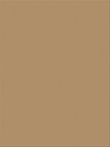 "Pacon SunWorks Construction Paper, 9"" x 12"", 100-Count, Light Brown (6904)"