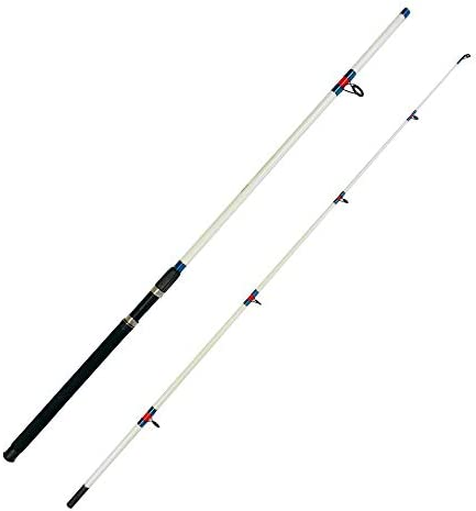 EatMyTackle 2 Piece Surf Fishing Rod – 10 ft.