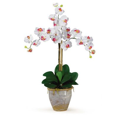 Nearly Natural Triple Stem Phalaenopsis Silk Orchid Arrangement