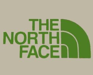 THE NORTH FACE ノースフェイス デザイン ロゴ ステッカー シール デカール グリーン