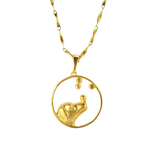- Onlyfo Gold Plated Dog Head in Circle Pendant Necklace with Jewelry Box,Dog Necklace for Women (Golden)