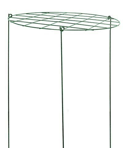 Gardman Grow-Through Plant Supports, 16'' dia., Pack of 10 by BestNest