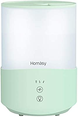4 Best Humidifiers for Dry Skin 2020 How Humidifiers Fix