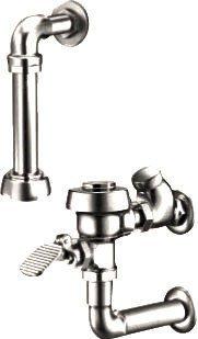 Royal Exposed Closet - Sloan Royal 310 Water Saver (3.5 gpf) Exposed Water Closet Foot Pedal Flushomete, Chrome