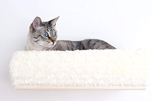 CatastrophiCreations Plush Padded Cat Bed Shelving - Handcrafted Wall-mounted Cat Furniture