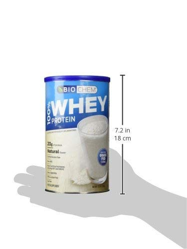 Biochem Ultimate Lo Carb Whey, Natural, 12.3-Ounce Can by Biochem (Image #4)