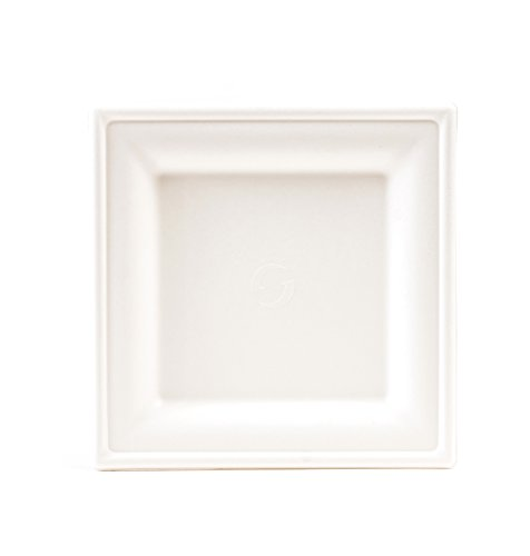 6-x-6-square-appetizer-dessert-plate-100-compostable-heavy-duty-elegant-and-classy-bright-white-fini