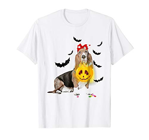 Funny Basset Hound Witch Take Pumpkin Halloween Costume -