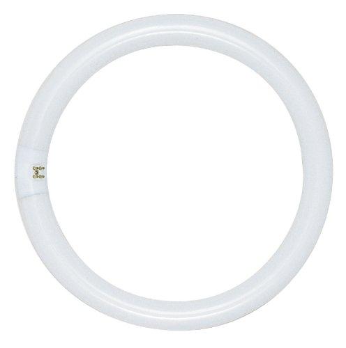Sylvania 40-watt T9 fluorescent bulb SY FC16T9/WW/RS