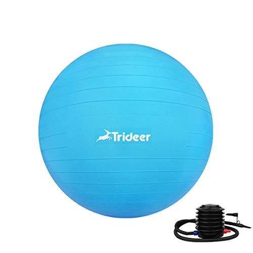 Trideer Exercise Ball (45-85cm) Extra Thick Yoga Ball Chair, Anti-Burst Heavy Duty Stability Ball Supports 2200lbs, Birthing Ball with Quick Pump (Office & Home & Gym) (Dark Blue, 65cm) by Trideer