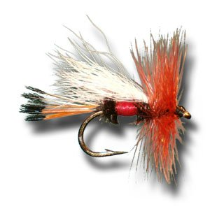 (Royal Coachman Trude Fly Fishing Fly - Size 16 - 6 Pack)