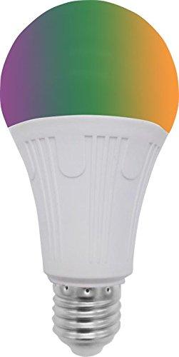 Led Light Bulb Options in Florida - 8