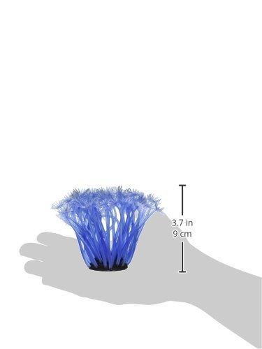 Amazon.com : eDealMax Base de cerámica de silicona acuario Coral Planta de decoración, DE 3, 1 pulgadas de altura, claro/Azul : Pet Supplies