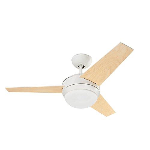 Ventilador de Techo con luz Windy 101cm /Ø Leds-C4