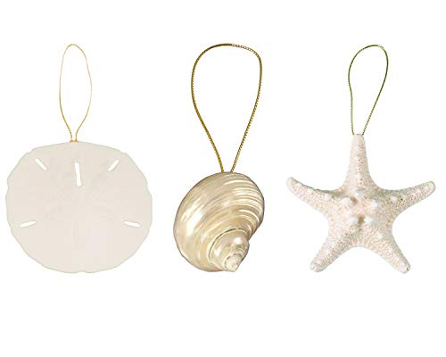 Tumbler Home Sea Shell Christmas Decoration Ornament Trio - Iridescent Spiral Turbo, 3.5 in Knobby Starfish and 3 inch Sand Dollar (Cheap Decorations Christmas Dollar Tree)
