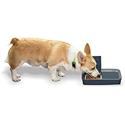 PetSafe Digital Two Meal Dog and Cat Feeder, Dispenses Dog Food or Cat Food, LCD Display, Programmable Timer