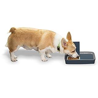 PetSafe Digital Two Meal Dog and Cat Feeder - Dispenses Dog Food or Cat Food - Programmable Pet Feeding - Portion Control - Digital Timer