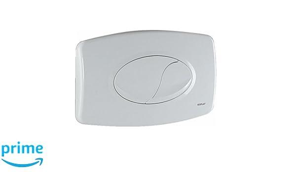 Regiplast 1620B placa de control doble caudal para depósito eurofutura 620 blanco: Amazon.es: Bricolaje y herramientas