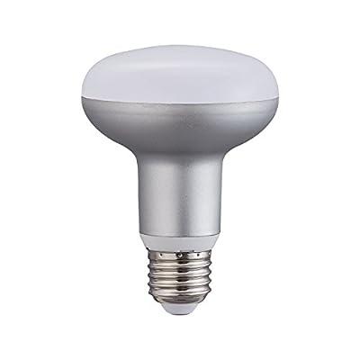9W LED Dimmable BR25 R25 bulb Equivalent to 90 Watt incandescent E26(Medium Base) sliver Daylight White 5000k,Circular Umbrella Mushroom Lamp(1 pack)