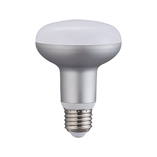 BR25/Br30 Dimmable LED Bulb, 100W Equivalent Flood Light Warm White 2700K, 9W, 900lm, R30 Indoor/Outdoor Track Lighting, Ceiling Recessed Light for Home, Office, E26 Base, 1 ()