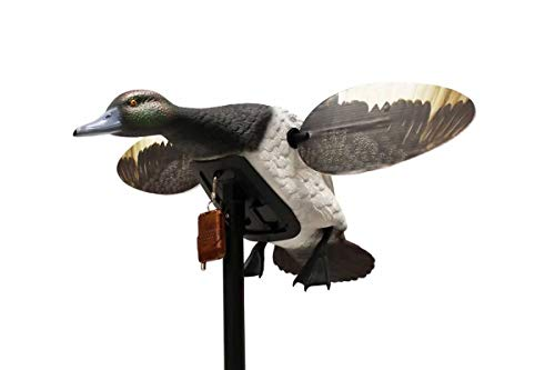 - MOJO Outdoors Elite Series Diver Bluebill - Duck Hunting Motion Decoy