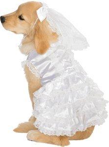 Bride Pet Costumes (Bride Pet Pet Costume - X-Large)