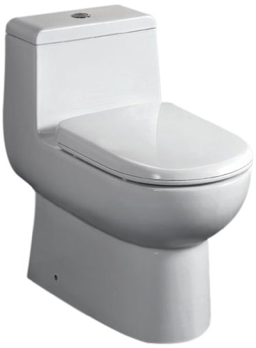 EAGO TB351 Dual Flush Eco-Friendly Ceramic Toilet, White, 1-Piece by EAGO