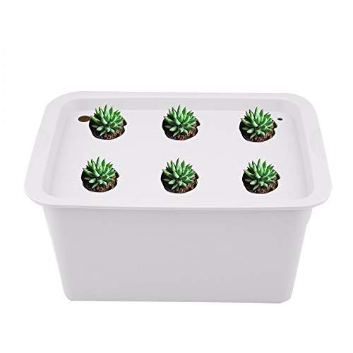 DonaldT1 Nursery Pots - Holes 220V/110V Plant Site Hydroponic System Indoor Garden Cabinet Box Grow Kit Bubble Garden Pots Planters Nursery Pots 1 PCs