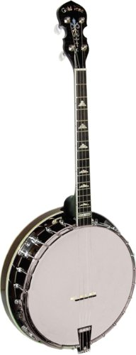 Gold Tone IT-250R Banjo