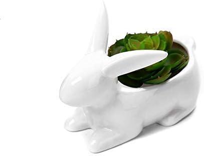 Gift Prod 1 Pcs Rabbit Pots Ceramic Succulent Planter Pots Mini Flower Plant Containers Cute Animal Shaped Cartoon Planter Pots Plant Window Boxes Style 8