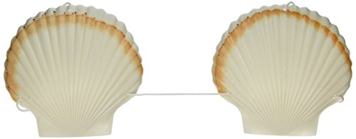 Bra Halloween Accessory - Plastic Shell Bikini Top Party Accessory (1 count) (1/Pkg)