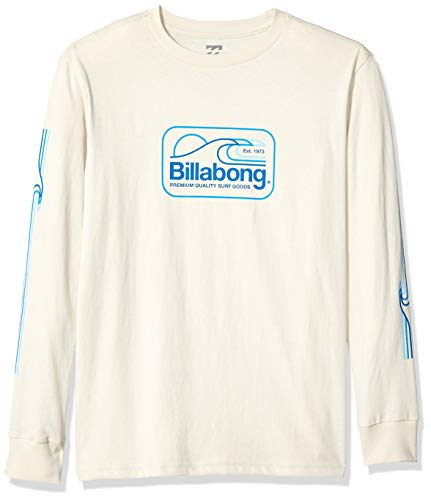 Billabong Boys' Dive T-Shirt Rock X-Large