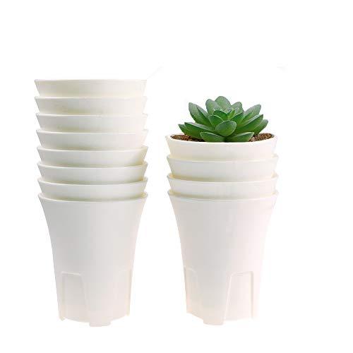 MUZHI 12PACK Breathable Deep Round White Flower Pot Drainage, Sturdy Plastic Tall Succulent Pots Bulk for Haworthia Cactus Lithops Herb Indoor Plant 4