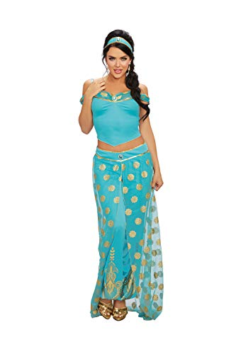 Dreamgirl Women's Arabian Princess, Costume, Medium