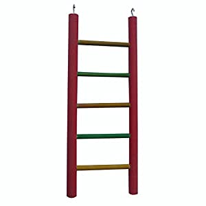 KSK Wooden Ladder Bird Toy,