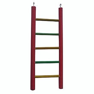 KSK Wooden Ladder Bird Toy,