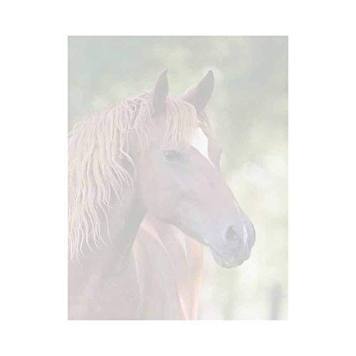 Brown Horse Letter Paper - Equestrian Animal Theme Design - Office Business School - Horse Letter